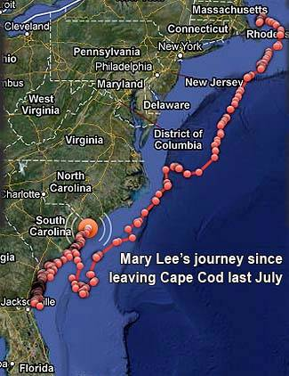 Mary lee journey