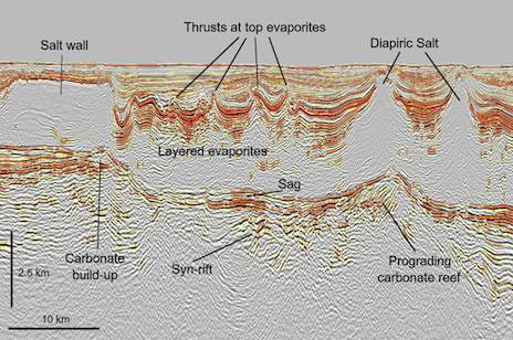 Seismic Line Article